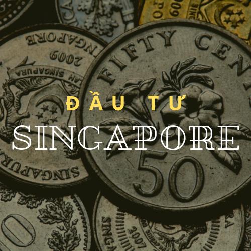 thu-tuc-hanh-chinh-khien-cac-startup-viet-chuyen-sang-thanh-lap-cong-ty-tai-singapore1