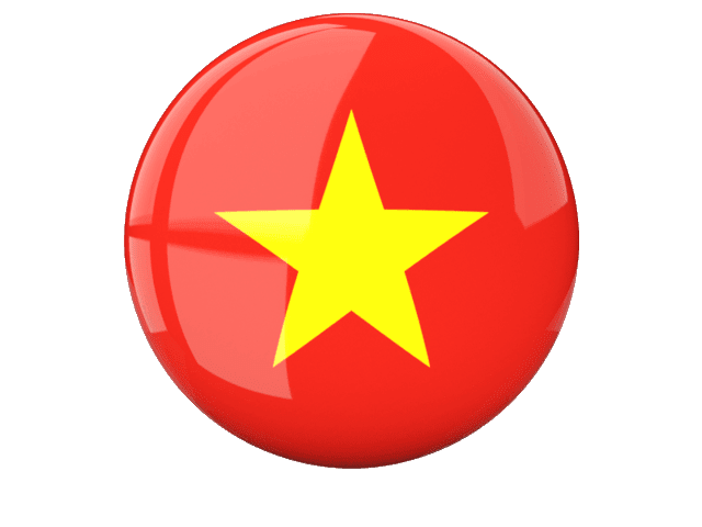 vn-flag-icon
