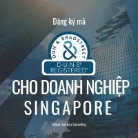 Đăng ký mã số DUNS cho doanh nghiệp tại Singapore