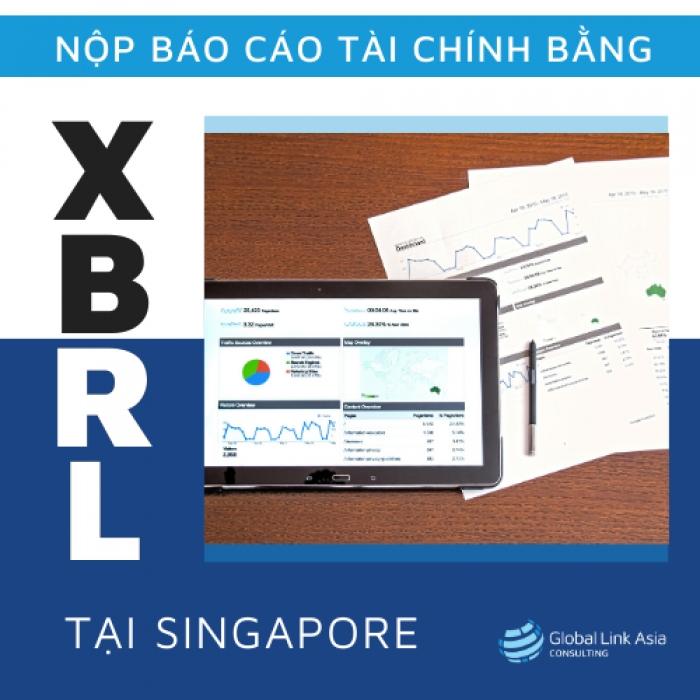 Nộp báo cáo tài chính bằng ngôn ngữ kinh doanh XBRL cho doanh nghiệp Singapore
