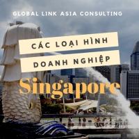 Các loại hình công ty tại Singapore