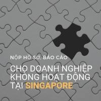 Những báo cáo doanh nghiệp không hoạt động (dormant company) tại Singapore bắt buộc phải nộp